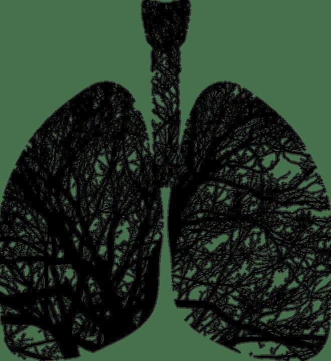 Cum să Curățim în Mod Natural Plămânii de Nicotină și Gudron