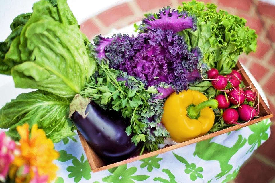 Indicatori ai normei vitaminelor și oligoelementelor: aflați ce vitamine anume vă lipsește